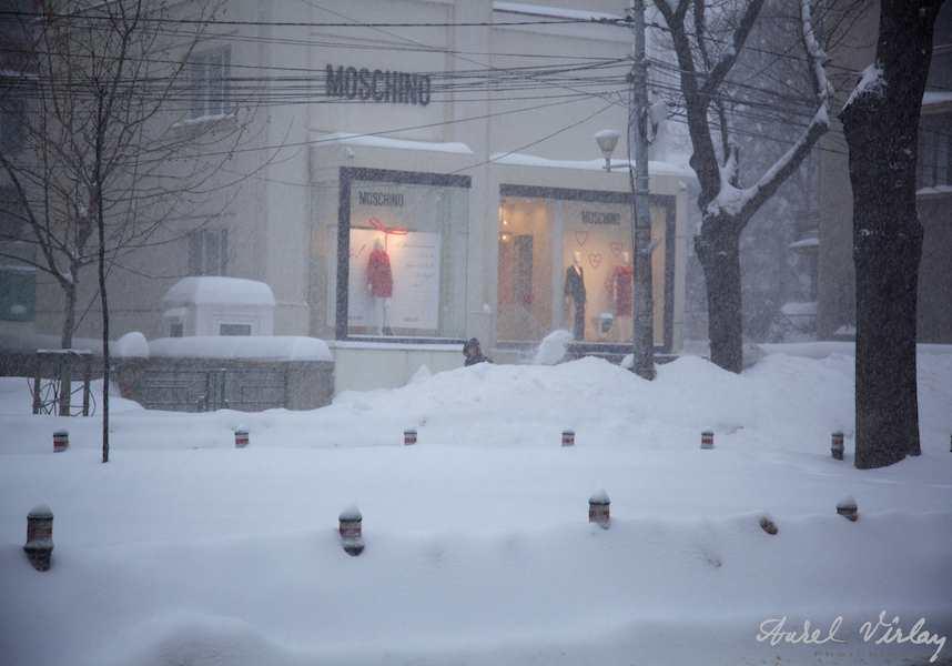 Calea Dorobantilor - fotografie troiene ninsoare
