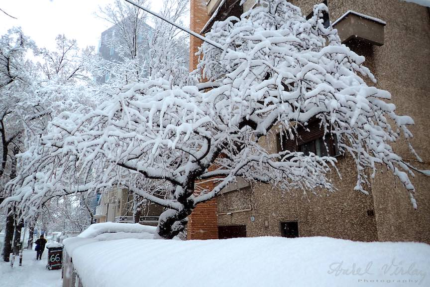 Fotografii ninsoare iarna Bucuresti - fotojurnalism Aurel Virlan - Emails 30
