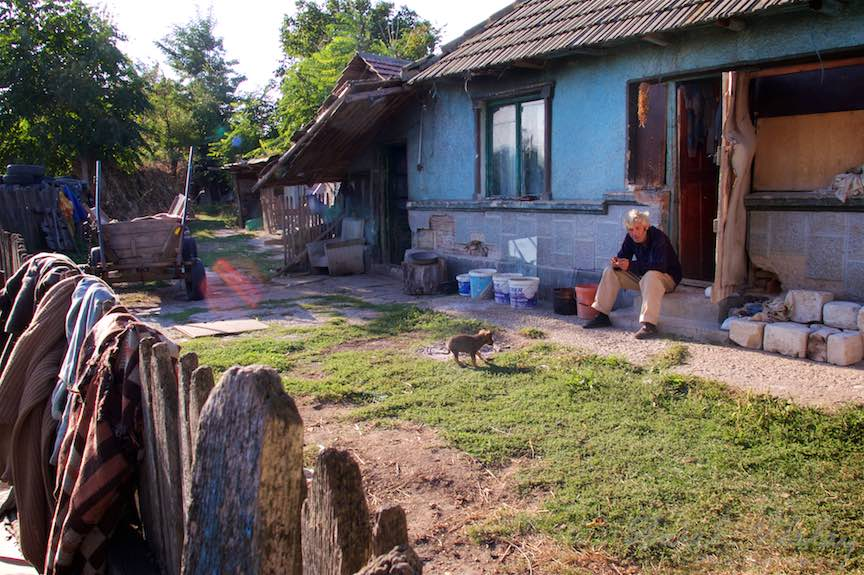 Viata la tara in Gruiu - Ograda cu un catel si un om.