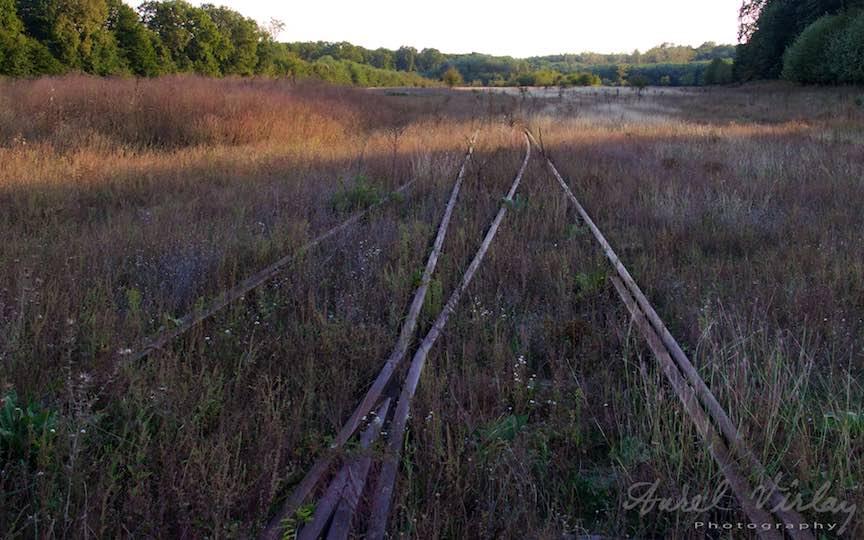 Tinut uitat de timp pare decor din filmul Calauza, cu aceste sine de cale ferata inghitite de buruieni.