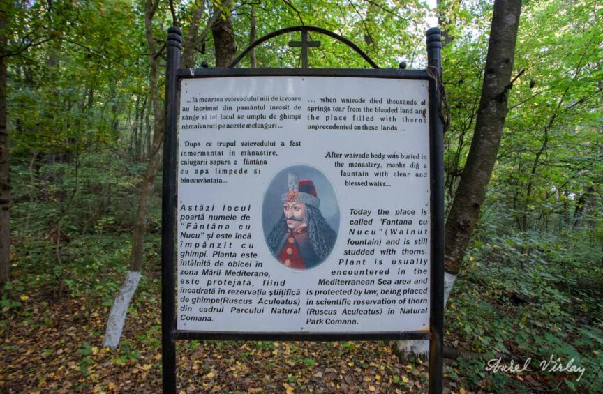 Legenda lui Vlad Tepes si a Fantanii cu Nucu din Parcul Natural Comana.