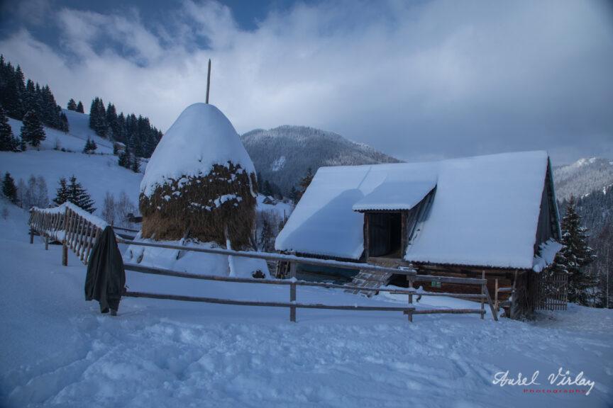 Capita de fan si grajdul pentru vaci sus pe munte, deasupra Moieciului de Sus.